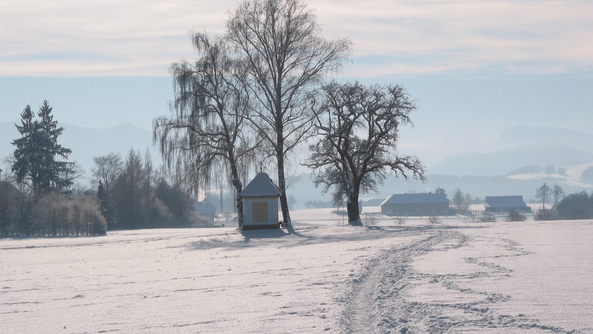 Winteraufnahme (c) TV Bad Hall (3)